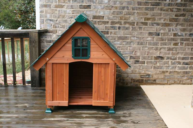 Small duck house dog house kit backyard chickens for Duck house size