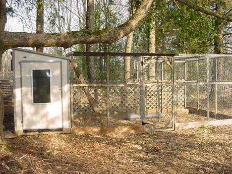 Keatings Home Depot Coo Backyard Chickens