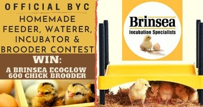Homemade Feeder, Waterer, Incubator, & Brooder Contest