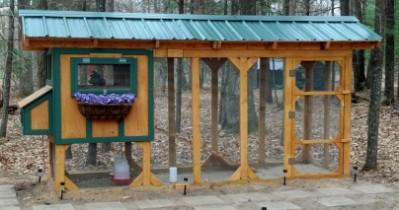 Coop Focus: Backwoods Playpen Coop