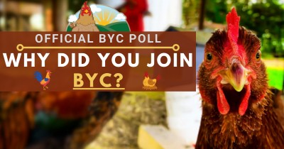 Official BYC Poll: Why Did You Join BYC?