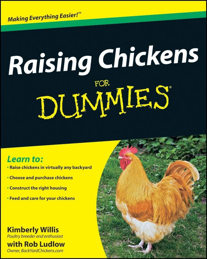 Backyard Chickens Book : Raising Chickens For Dummies Book  All You Need To Know In One Book