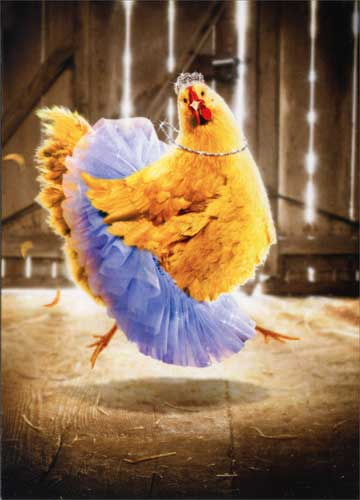 cd10446-chicken-in-tutu-birthday-card.jpg