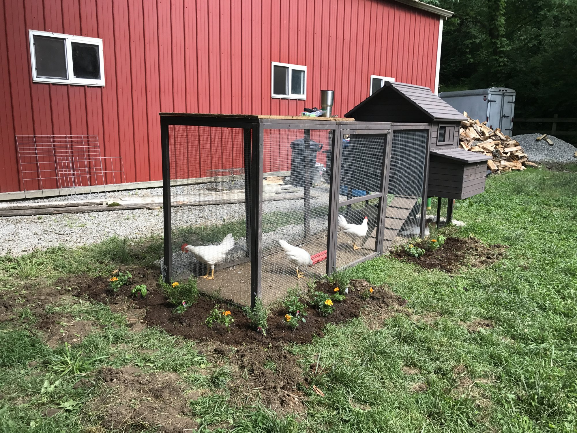Chicken Coop NW Coop Kit | BackYard Chickens - Learn How ...