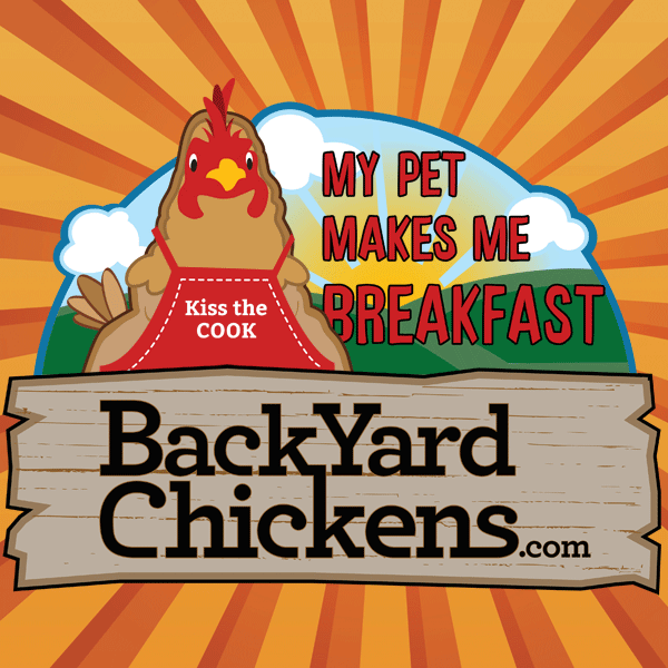 Build A Chunnel... | Backyard Chickens - Learn How To Raise Chickens